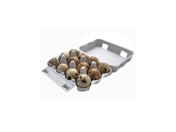 Wachteleiverpackungen aus Karton 6, 12, 18 Eier-