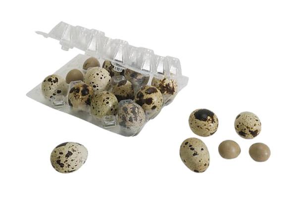 Wachteleiverpackungen aus Kunststoff für 12 und 18 Eier-